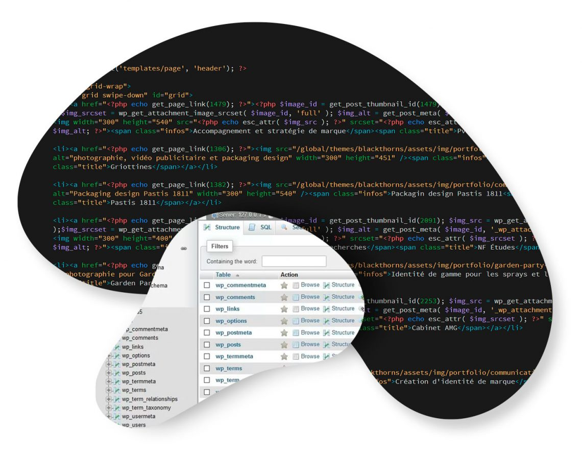 Web development: HTML, PHP, SQL