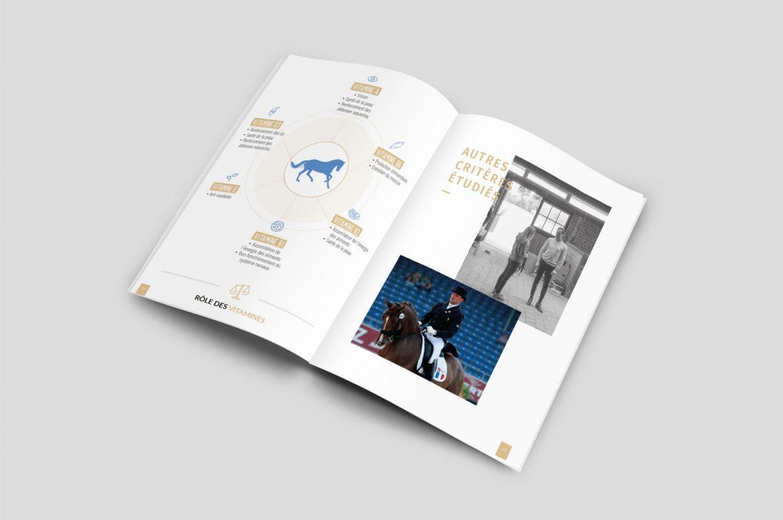 Corporate identity brochure