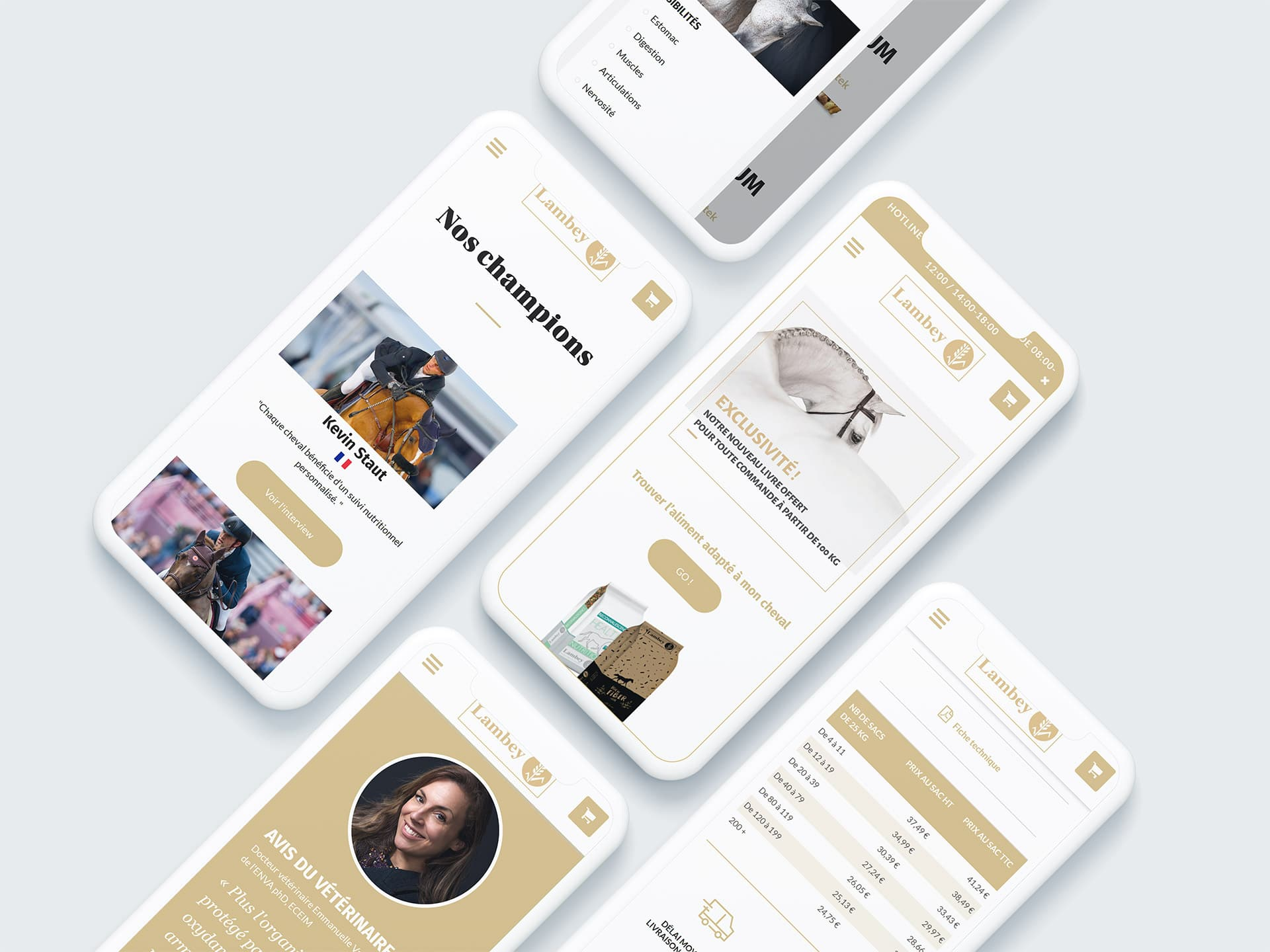 UX UI mobile design Lambey