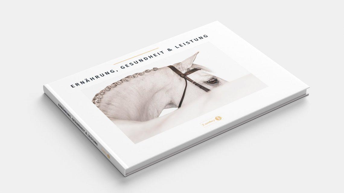 Realization graphic design book scientific horse riding german version