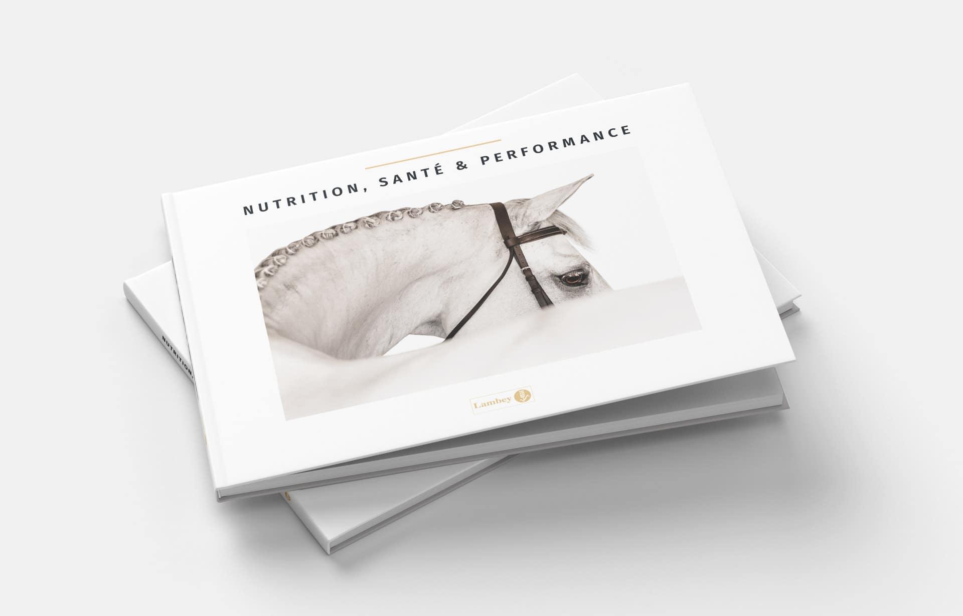 Layout d'a scientific book