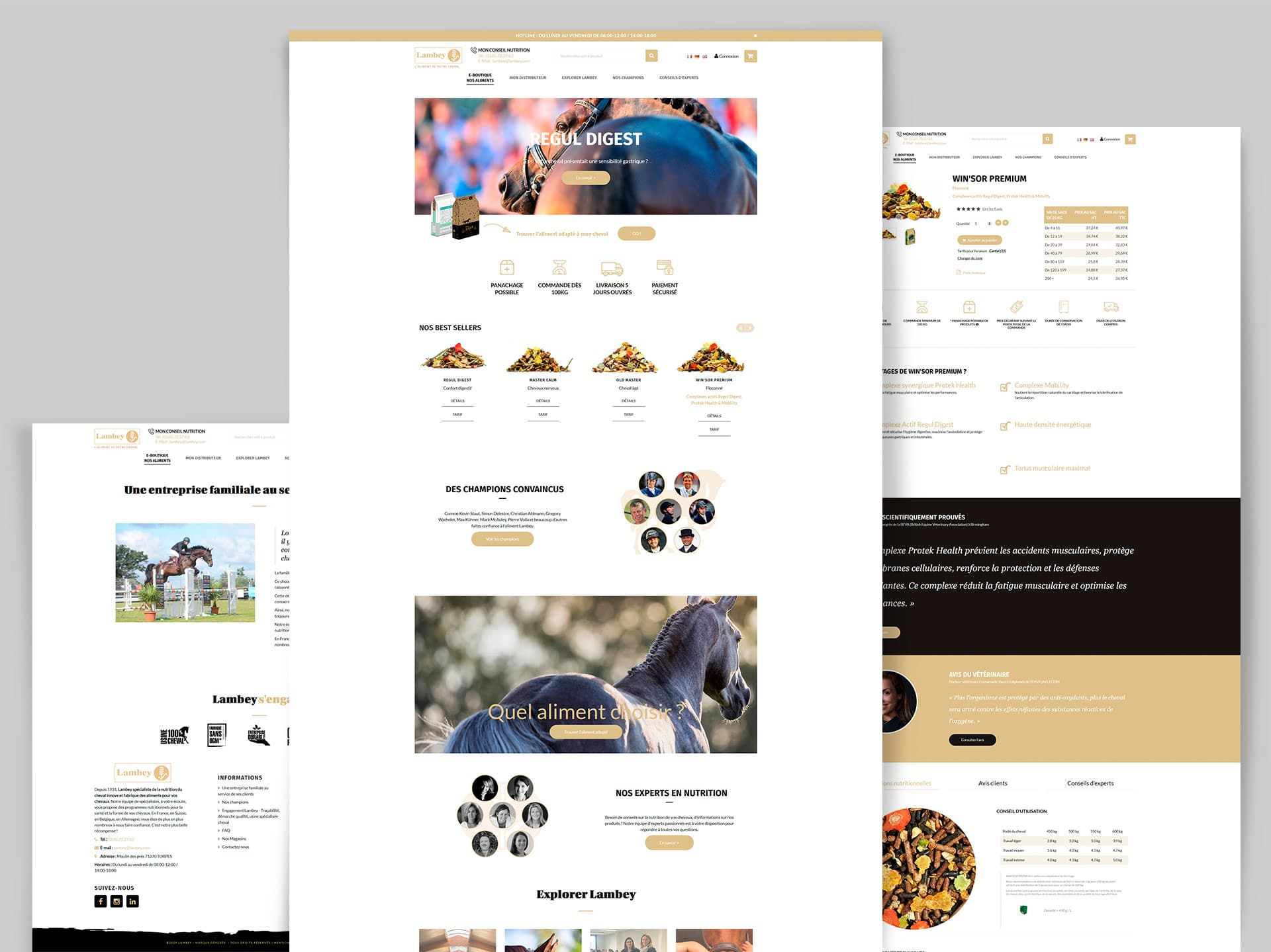 Webdesign creation